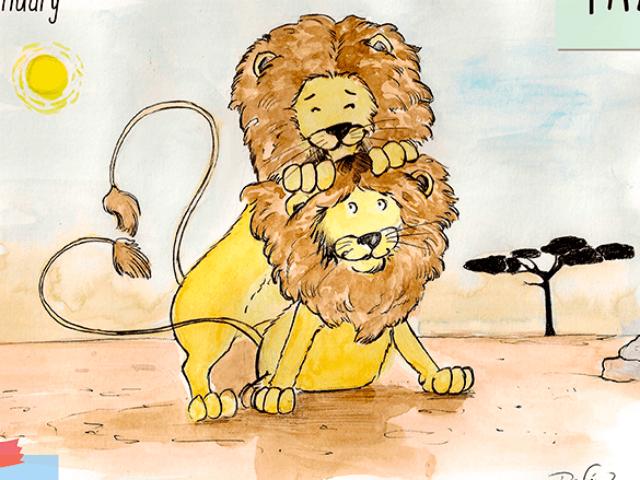 leones-enero-640x480